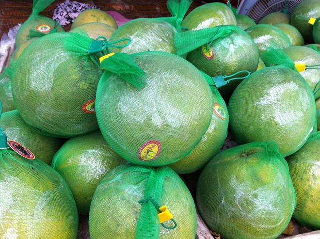 địa chỉ mua bưởi da xanh giá tốt tại thành phố Hồ CHí Minh